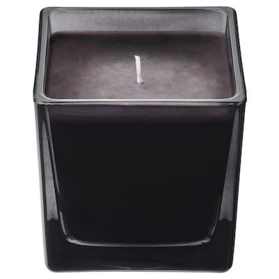 FRAMFÄRD Świeca zapachowa w szkle, sosna/czarny, 8 cm