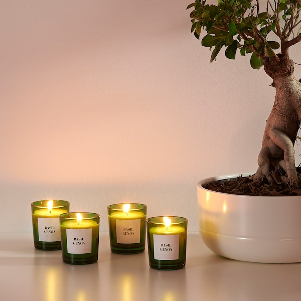 RINGLAD Świeca zapachowa w szkle, bazylia/zielony