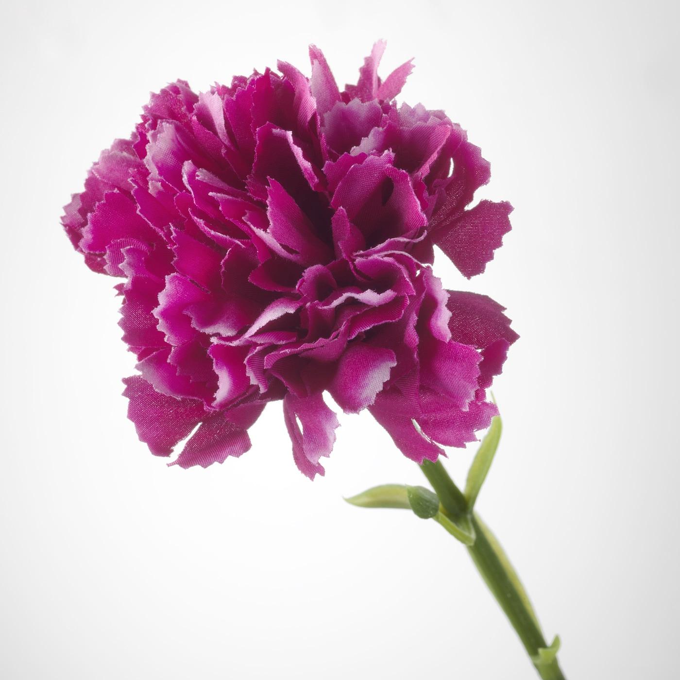 SMYCKA Sztuczny kwiat - goździk/ciemnoliliowy 30 cm