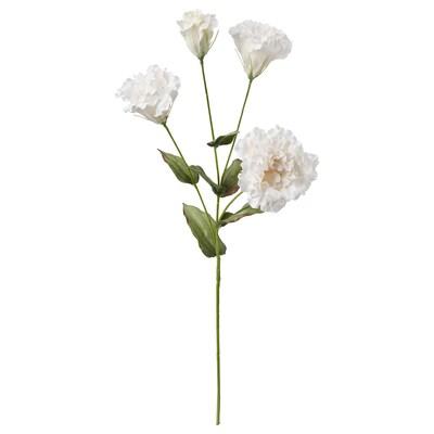 SMYCKA Sztuczny kwiat, Lizantus/biały, 60 cm