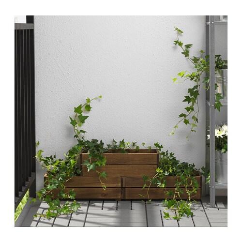 СТЭРНАНИС Ящик для цветов, для сада акация, 43x15 см-4