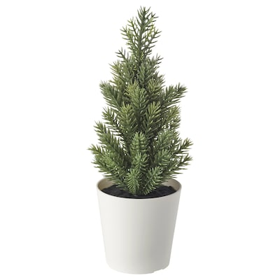 VINTER 2020 Sztuczna roślina w doniczce, do wewnątrz/na zewnątrz/Choinka zielony, 6 cm