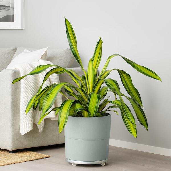 NYPON plant pot in/outdoor grey 32 cm 34 cm 32 cm 33 cm