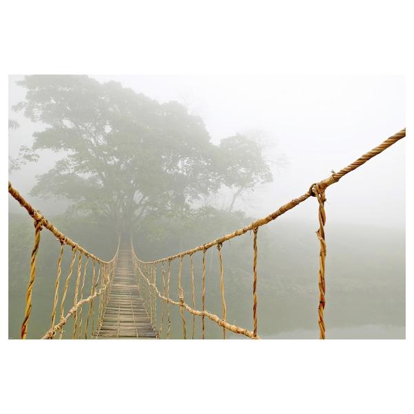BILD Póster, Viagem pela selva, 91x61 cm