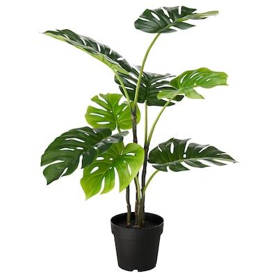 FEJKA Planta artificial em vaso, interior/exterior costela-de-Adão, 19 cm