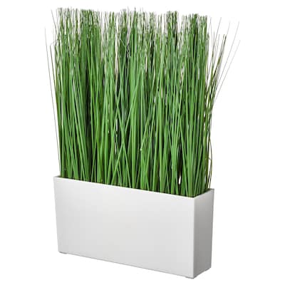 FEJKA Planta artificial em vaso, interior/exterior erva