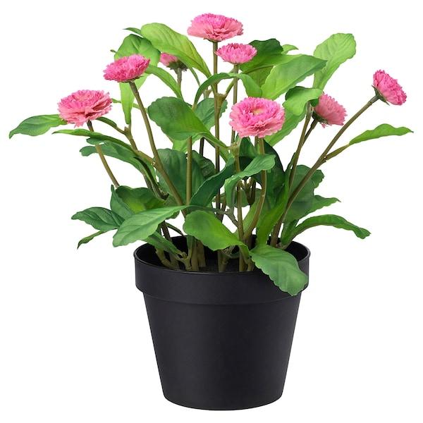 FEJKA Planta artificial em vaso, interior/exterior/Margarida comum rosa, 12 cm
