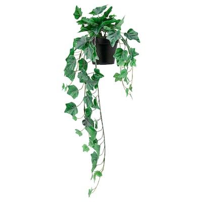 FEJKA Planta artificial em vaso, interior/exterior/p/pendurar hera, 12 cm