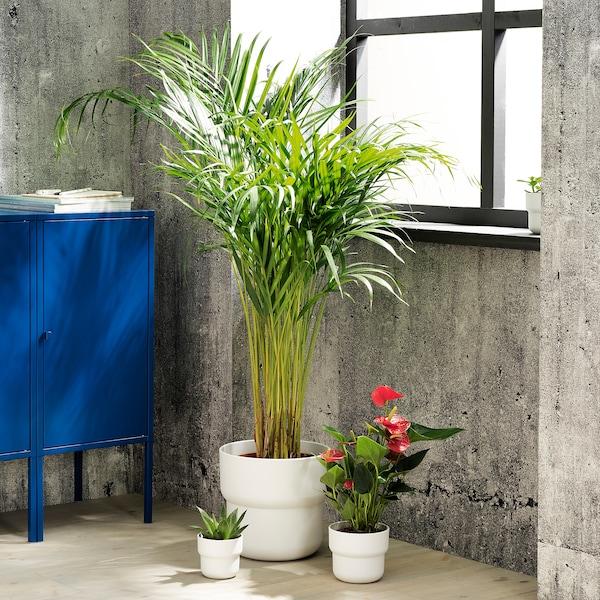 FÖRENLIG Vaso, interior/exterior branco, 9 cm