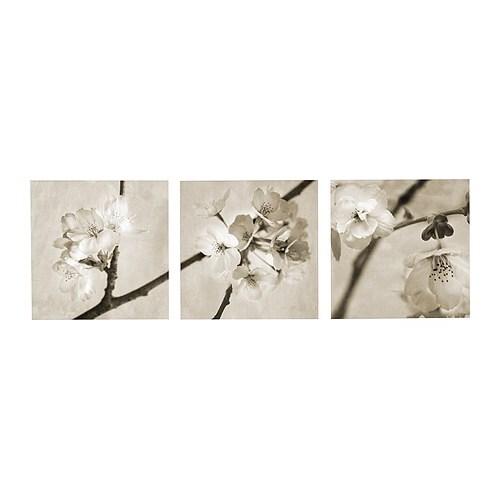 PJÄTTERYD Quadro, conj. 3, Flora Maia Largura: 56 cm Altura: 56 cm