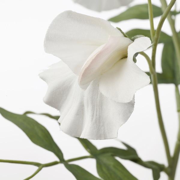 SMYCKA Flor artificial, ervilha de cheiro/branco, 60 cm