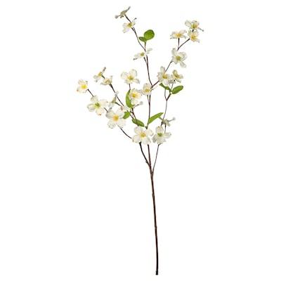 SMYCKA Flor artificial, interior/exterior/Corniso florido branco, 56 cm