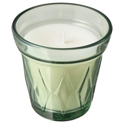 VÄLDOFT Vela perfumada em copo, Orvalho da manhã/verde claro, 8 cm