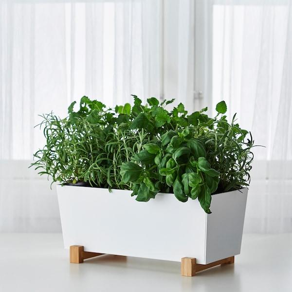 BITTERGURKA plant pot white 32 cm 15 cm 15 cm
