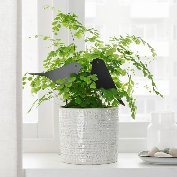BLOMSTERBÖNA Decoration stick, set of 2, in/outdoor/bird black