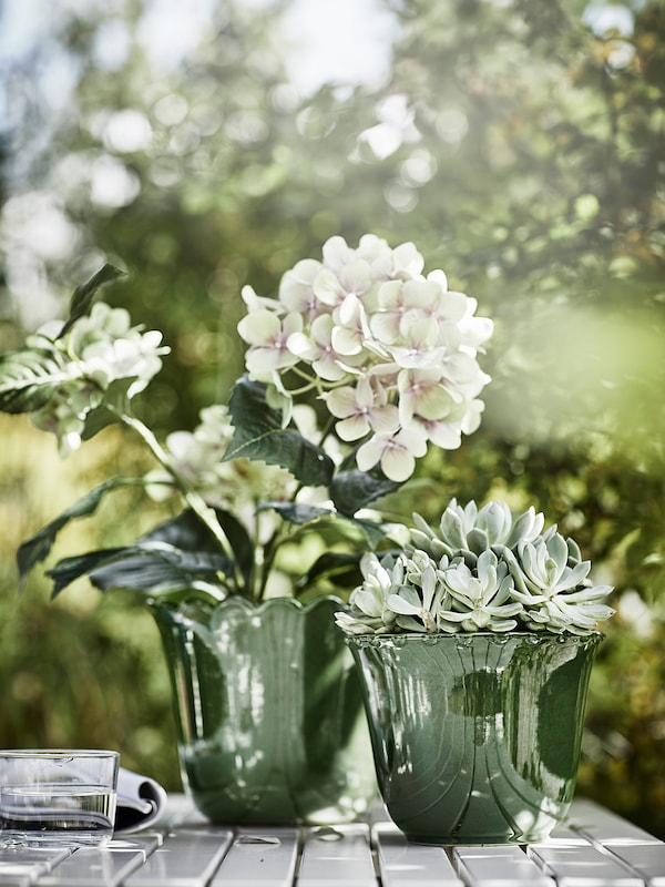 FEJKA Artificial potted plant, in/outdoor/Hydrangea green, 12 cm