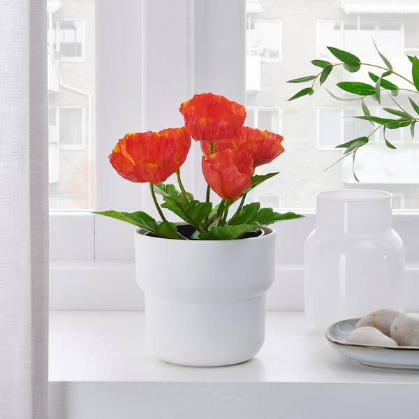FEJKA Artificial potted plant, in/outdoor/Poppy red, 9 cm