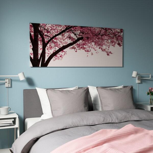 PJÄTTERYD Picture, Cherry blossom tree, 140x56 cm