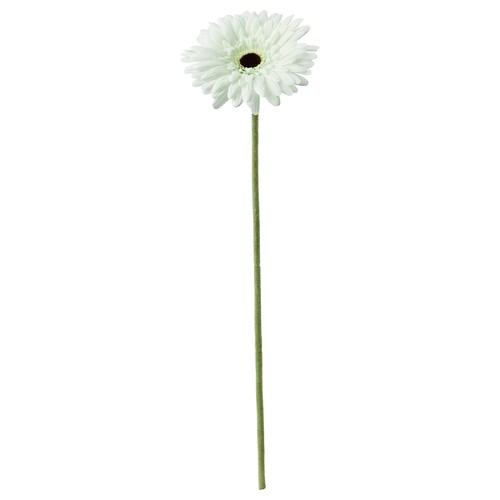 SMYCKA artificial flower Gerbera/white 50 cm