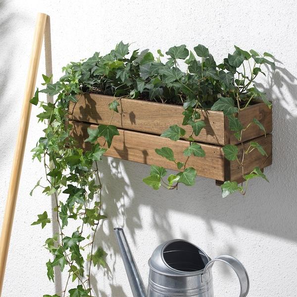 STJÄRNANIS Flower box, outdoor acacia, 43x15 cm