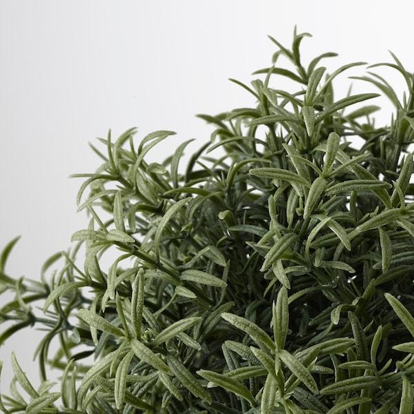 FEJKA Plantă artificială, Rozmarin ( Rosmarinus), 9 cm