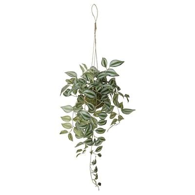 INVÄNDIG Plantă artificială, suspendat Tradesceantia, 70 cm