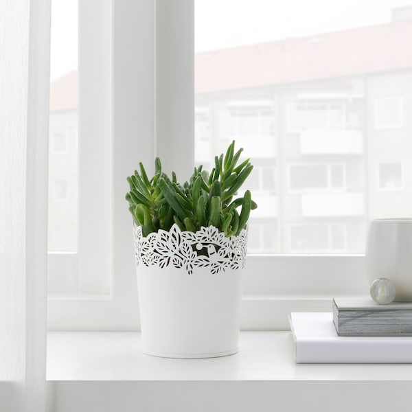 SAMVERKA Ghiveci, alb, 9 cm
