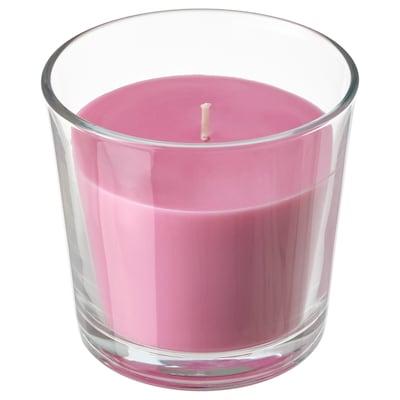 SINNLIG Lumânare parfumată pahar, cireşe/roz, 9 cm