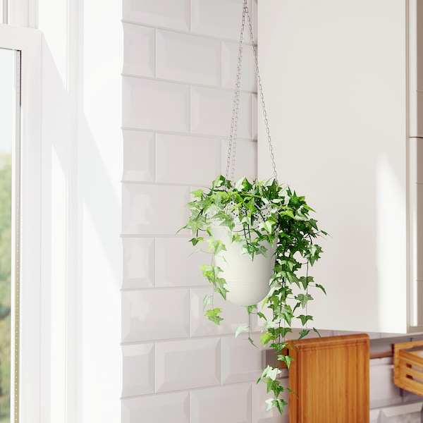 SKURAR Ghiveci suspendat, interior/exterior/alb, 12 cm