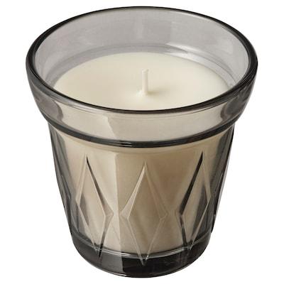 VÄLDOFT Lumânare parfumată pahar, Caramel sărat/gri, 8 cm