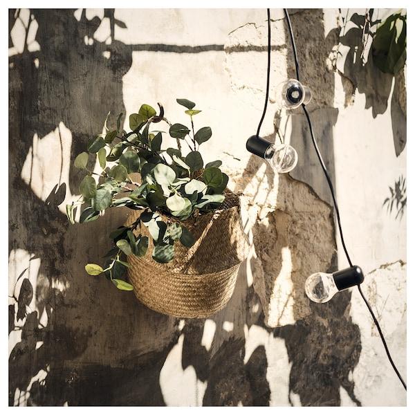 SMYCKA Veštački list, eukaliptus/zelena, 65 cm