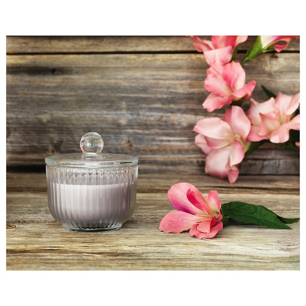 BLOMDOFT Scented candle in glass, Gladiolus/grey, 9 cm