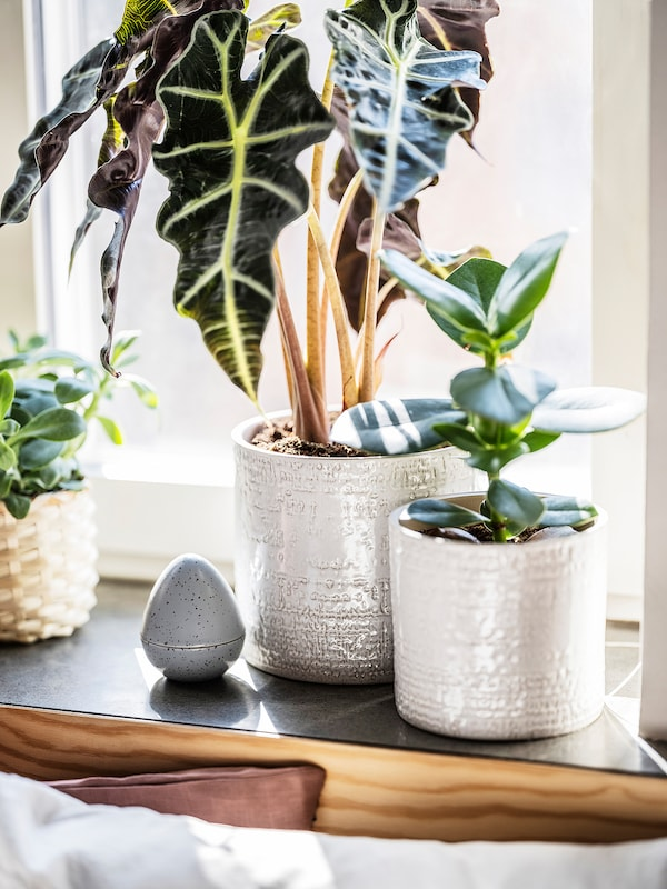 CHIAFRÖN Plant pot, in/outdoor white, 15 cm