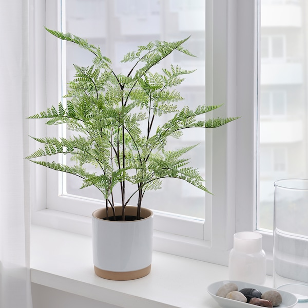 FEJKA Artificial potted plant, in/outdoor Asparagus, 12 cm