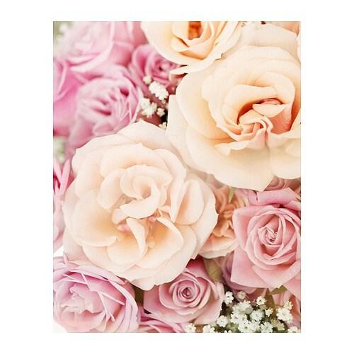 AGNARYD Tavla, rosor Bredd: 39 cm Höjd: 49 cm