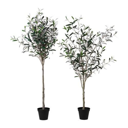 FEJKA Konstgjord krukväxt, Olivträd Krukans diameter: 17 cm Höjd: 146 cm