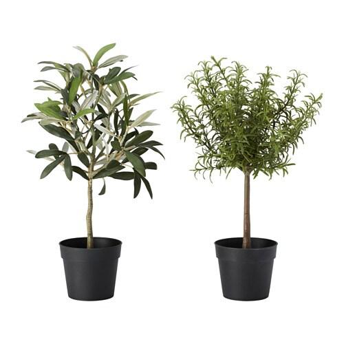 FEJKA Konstgjord krukväxt IKEA Naturtrogen, konstgjord växt som håller sig lika fräsch år efter år.