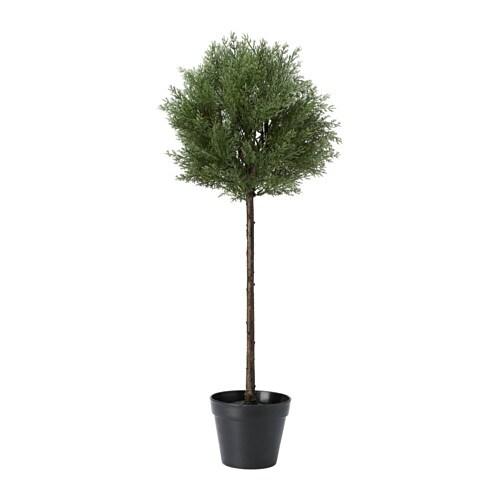 FEJKA Konstgjord krukväxt , ceder inom-/utomhus, ceder stam stam Krukans diameter: 17 cm Höjd: 85 cm