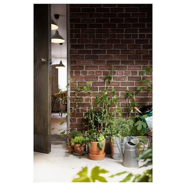 INGEFÄRA Kruka med fat, utomhus/terrakotta, 15 cm