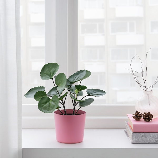 OMFÅNG Kruka, inom-/utomhus/rosa, 9 cm