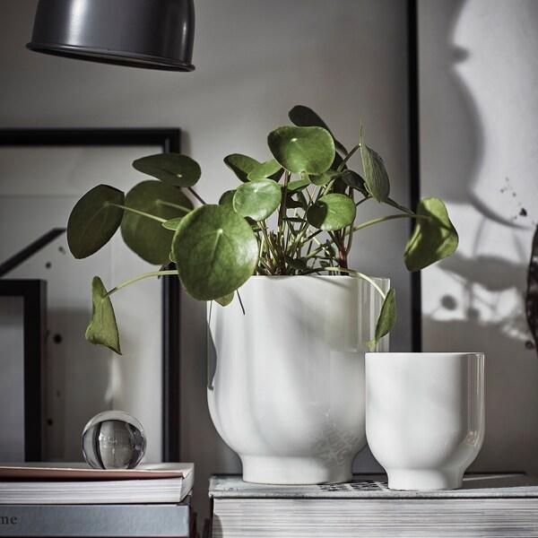 DRÖMSK Plant pot, white, 15 cm