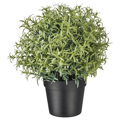 FEJKA Artificial potted plant, Rosemary, 9 cm