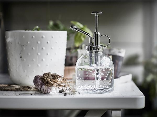 SESAMFRÖN Plant mister, clear glass, 25 cl