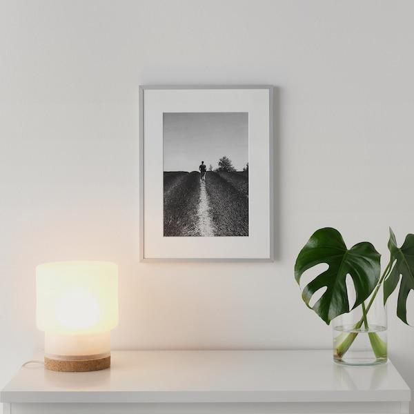 LOMVIKEN Rám, hliník, 30x40 cm