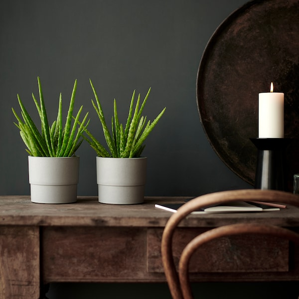 NYPON Kvetináč, na von/dnu sivá, 12 cm