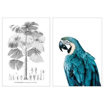 BILD Poster, Bird and tree, 50x70 cm