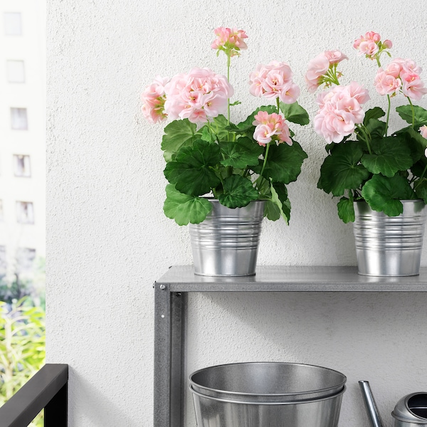 FEJKA Artificial potted plant, in/outdoor/Geranium pink, 12 cm