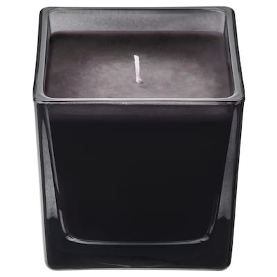 FRAMFÄRD Scented candle in glass, pine/black, 8 cm