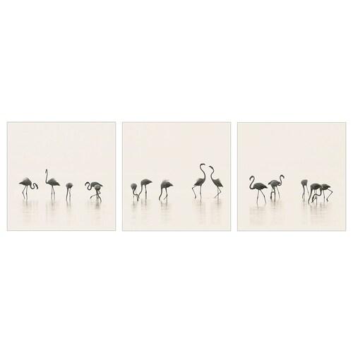 พแยทเทอรีด รูปภาพ Flamingos 56 ซม. 56 ซม. 3 ชิ้น