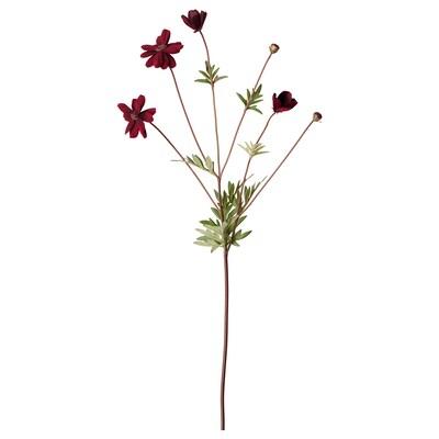 SMYCKA สมึคก้า ดอกไม้ประดิษฐ์, cosmos/แดงเข้ม, 65 ซม.
